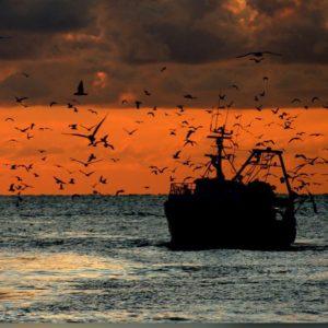 Barca tramonto